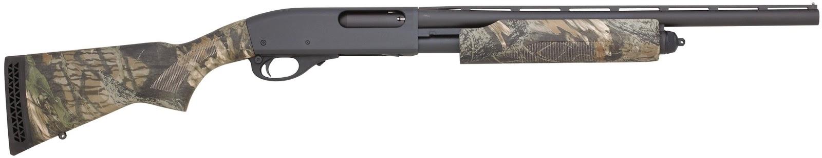 lesurvivaliste choisir une arme a feu. Black Bedroom Furniture Sets. Home Design Ideas