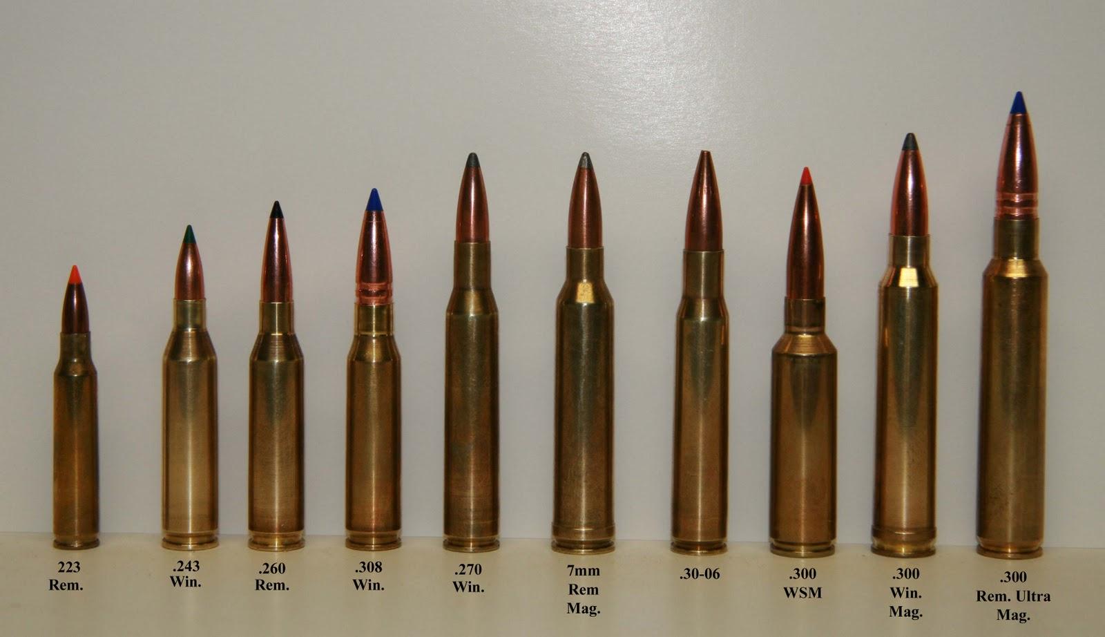 d508f5fab19 Le .223 a gauche est basiquement de la même taille que le calibre de  l AK...comparé au .30-06 ou au .270 de la plupart des fusils de chasse
