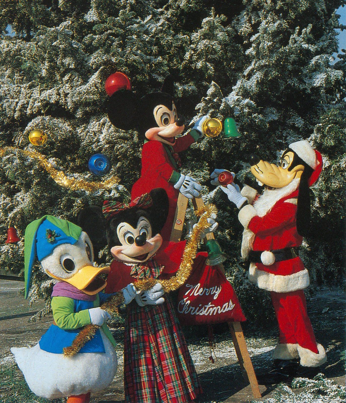 Disneyland Decorated For Christmas: Disney On Parole: Disneylands LIVE Christmas Trees