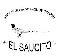 RANCHO EL SAUCITO EN IMURIS SONORA