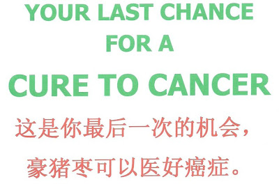YOUR LAST CHANCE FOR A CURE TO CANCER