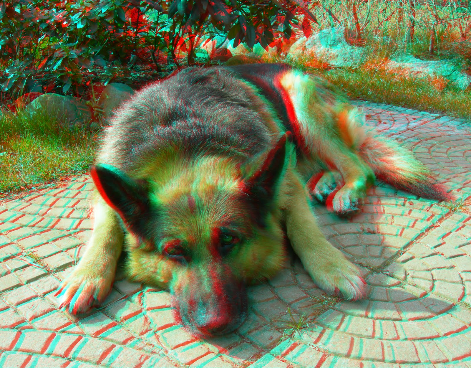 Projects In Computers: 3D Anaglyph Photography
