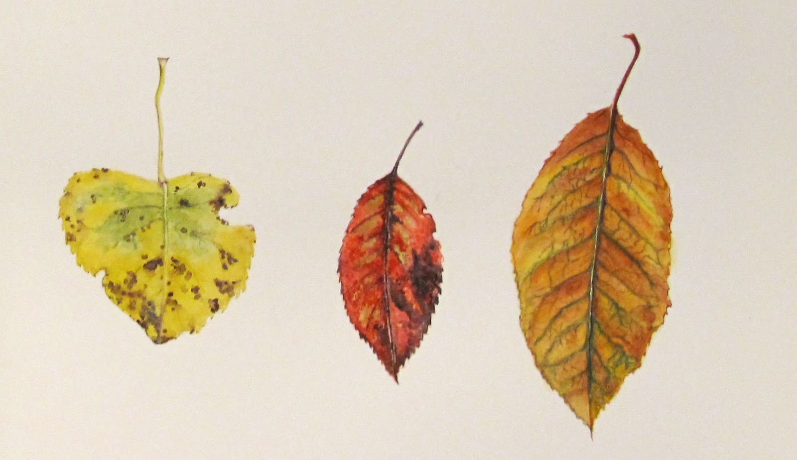 essay autumn leaves To autumn analysis essay to autumn is a lyrical poem, which propounds the writer's feelings and thoughts on a particularly beautiful day.