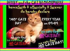 MO Cats Day