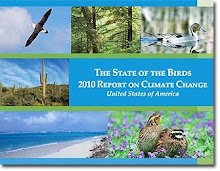 The State of the Birds - 2010 Report