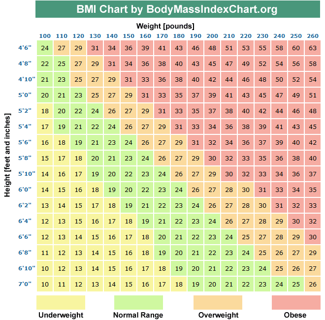average body fat percentage nhs