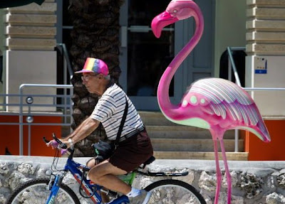Image of bicyclist in Miami