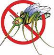 Mosquito Peril