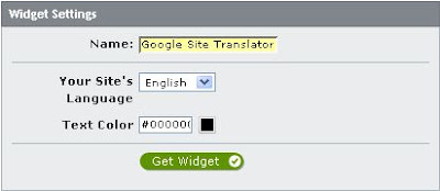 Google site translator widget