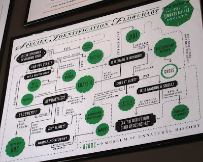 Species Identification Flowchart poster in green and black