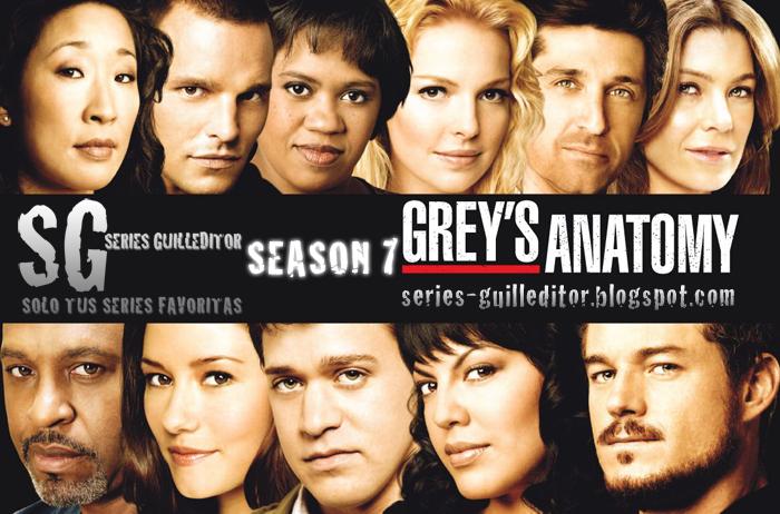 Greys anatomy S07E09