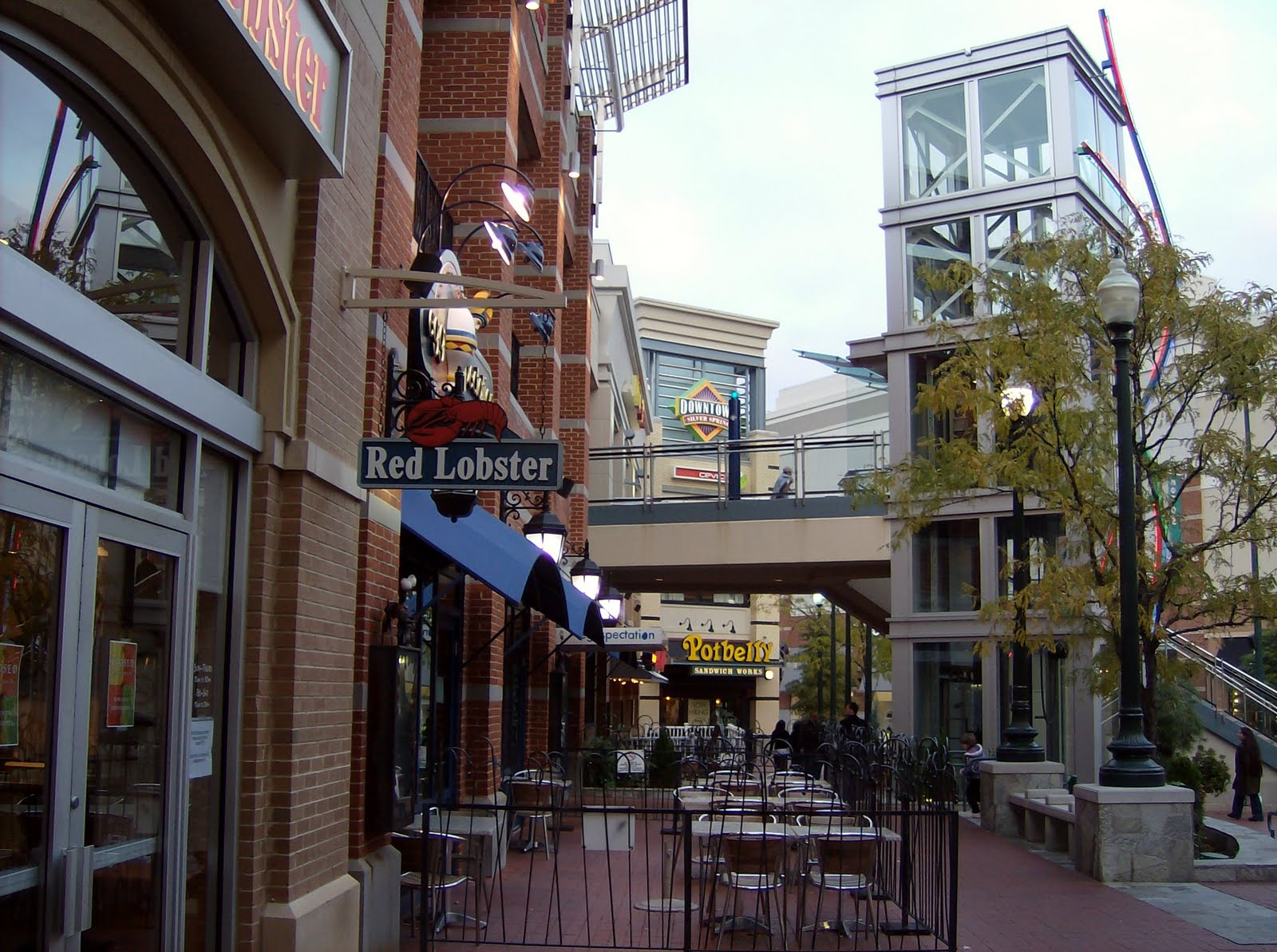 updates  live  downtown silver spring  red lobster