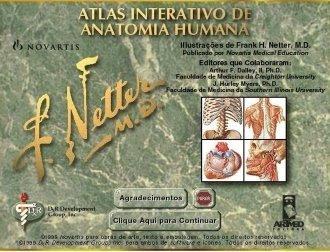 Atlas De Anatomia Humana Netter Pdf Download