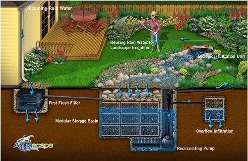 Ken S Blog Rainwater Harvesting