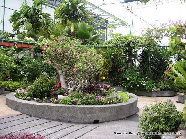 My Nice Garden The Rooftop Secret Garden Of 1 Utama