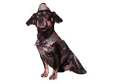 Costumaş militar NATO.