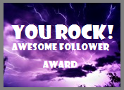 You Rock! Awesome Follower Award :D
