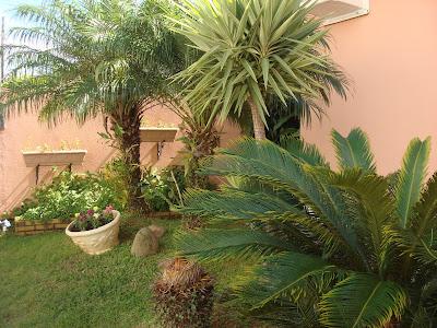 gramado-com-plantas-ornamentais