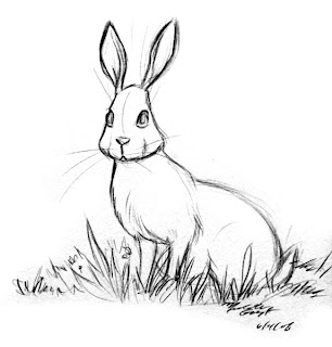 Mish 39 s blogtastic blog june 2008 for Snowshoe hare coloring page
