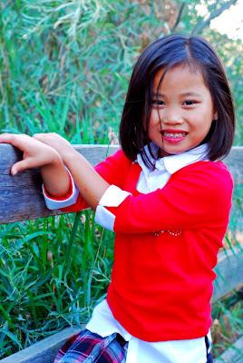 The Vickerman S China Adoption