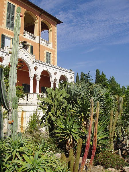 Botanischer Garten Italien Gardasee: Wellcome Library: May 2010