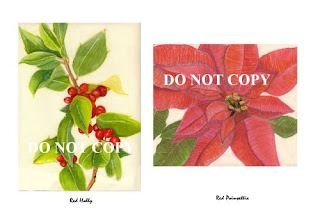 rAtencio-red-poinsettia-red-holly-note-card