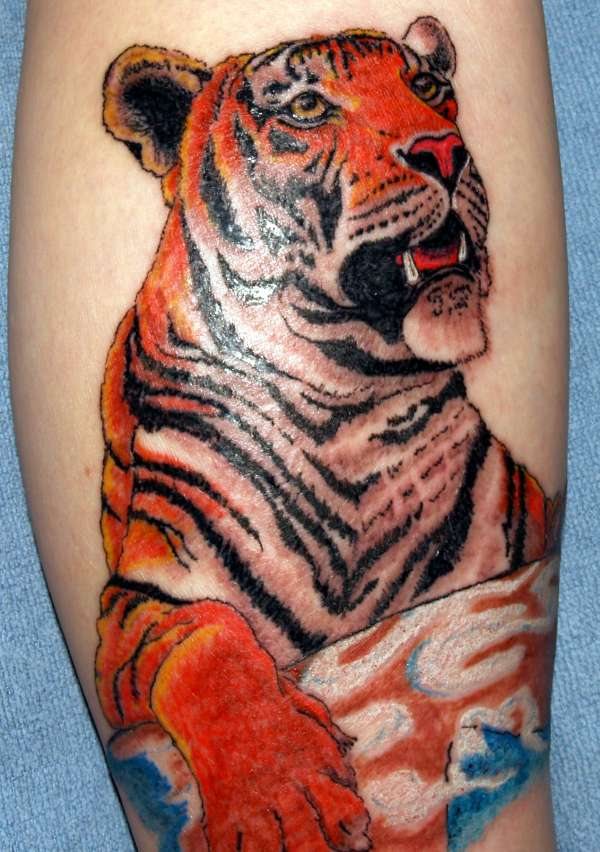 2e04a1d2b3efb tiger tattoo designs   White Tiger Tattoo Design   Japanese Tiger Tattoo  Designs   Dragon and