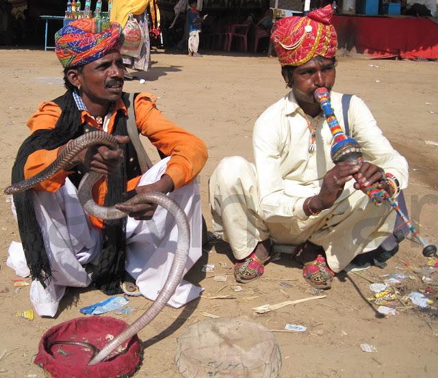 snake charmer india