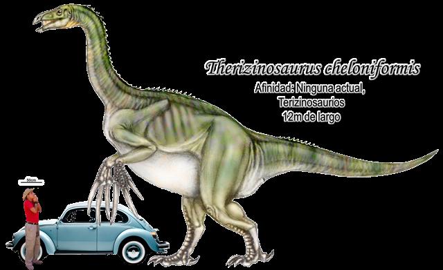 Therizinosaurus cheloniformis a escala.