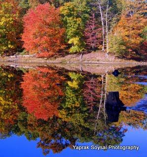 Yaprak Soysal Photography Scenes From Sleepy Creek Lake