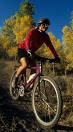 Statistics states that there are more than 40 million Americans who ride bikes at least monthly. Over 5 million people ride at least 20 days/month. With so many Americans bicycling injuries sustained have also risen especially neck and upper back pain.