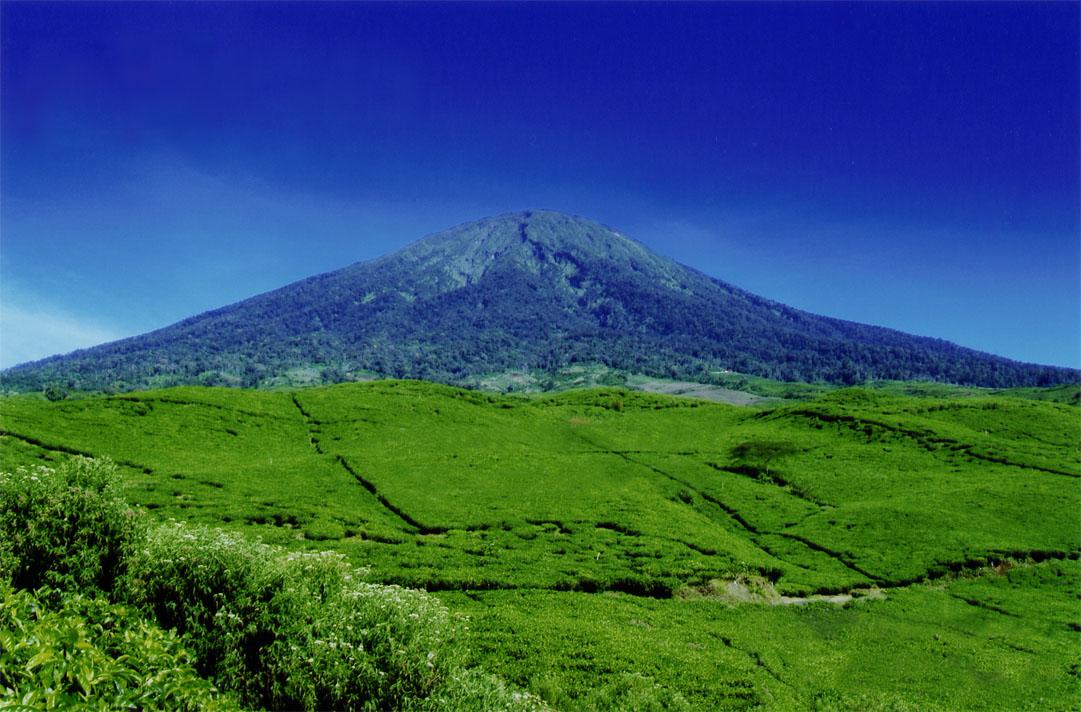 gunung dempo dan pagaralam