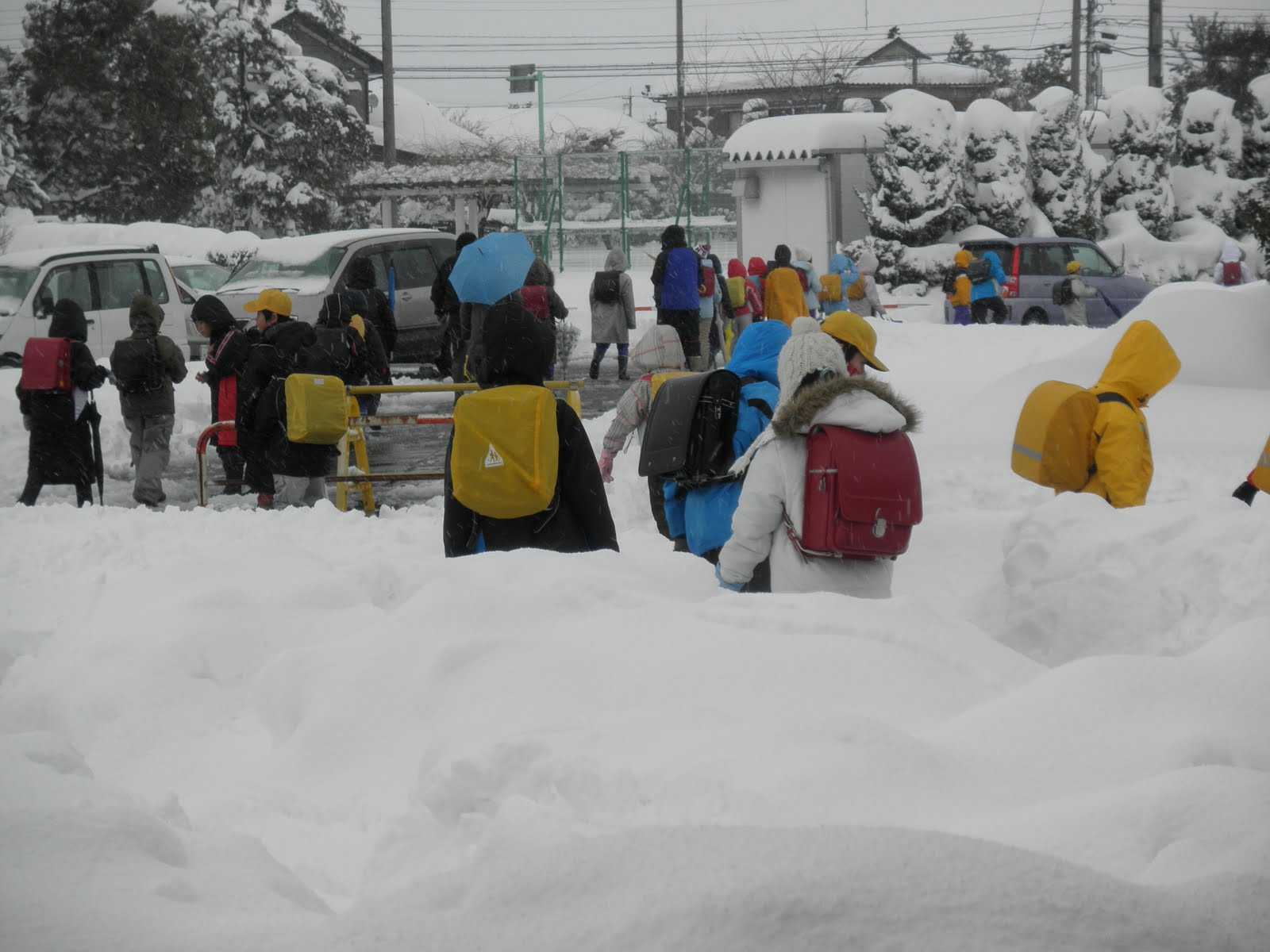 雪の径/集団下校/夕方の除雪