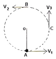 AP Physics Resources: AP Physics B and C– Answer to Free