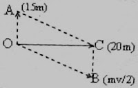 Physicsplus: Multiple Choice Questions on Newton's Laws of