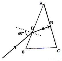 Physicsplus: Geometrical Optics- Questions (MCQ) on
