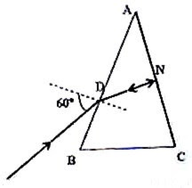 Physicsplus: Geometrical Optics- Questions (MCQ) on