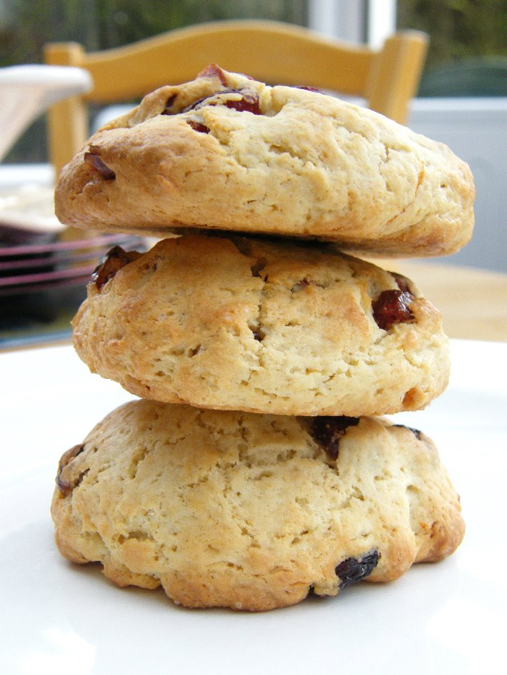 Elyse's Cranberry Orange Cookies - Tinned Tomatoes