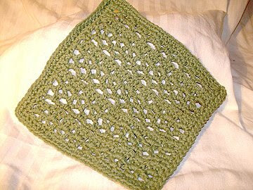Quick Dry Dishcloth