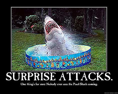 photo of a shark coming out of a backyard pool