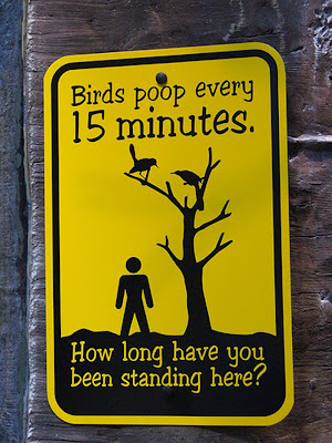 photo of a birds poop every fifteen minutes sign
