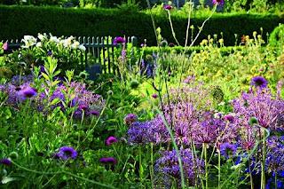 cottage garden was ist eigentlich ein cottage garden. Black Bedroom Furniture Sets. Home Design Ideas
