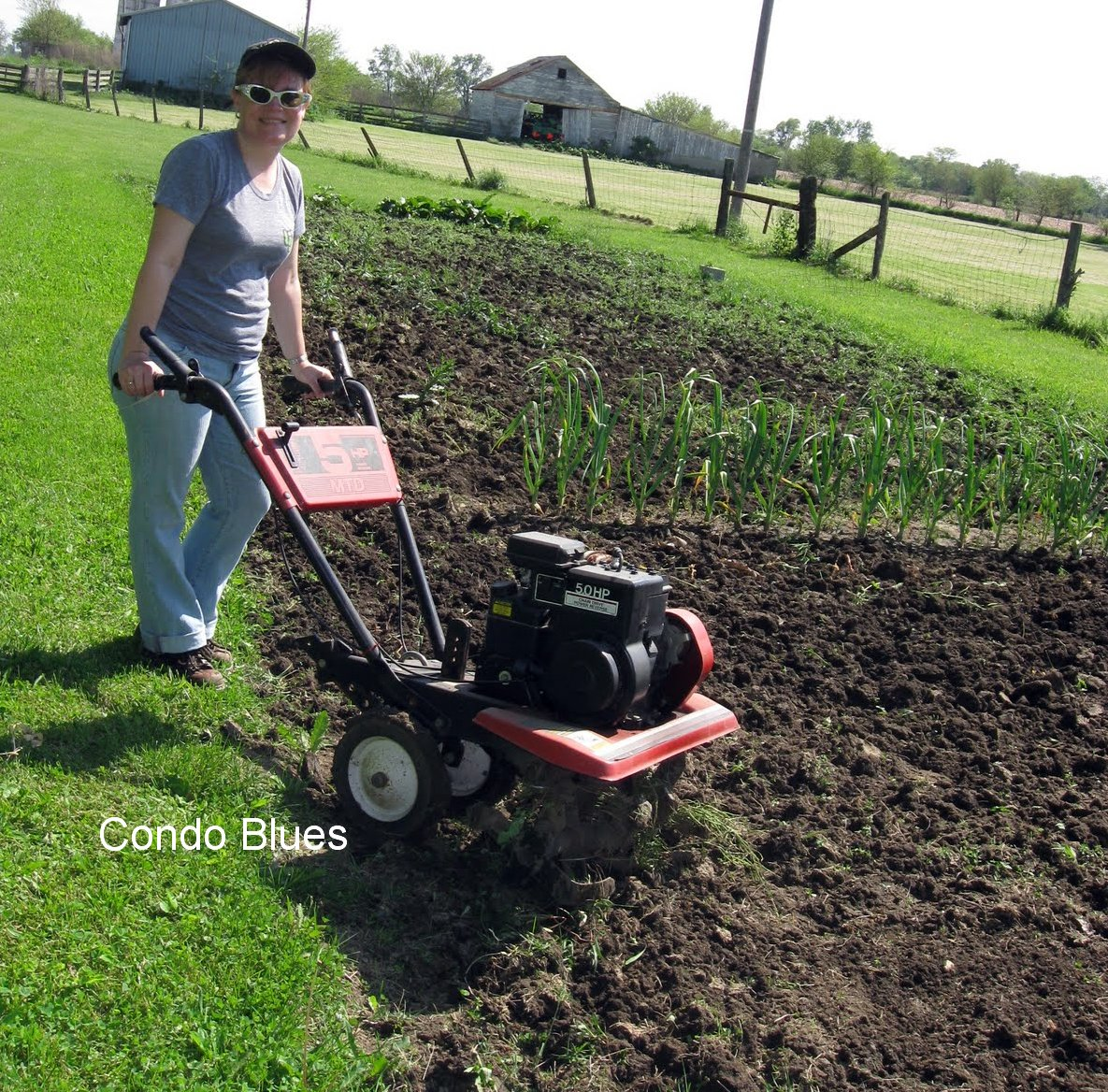 Tilling Backyard: Condo Blues: How To Use A Rototiller