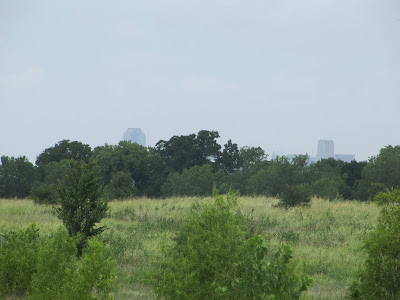 Trinity River Audubon center view of Dallas