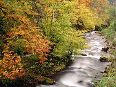 rio-atravesando-el-parque-natural-de-somiedo-Asturias