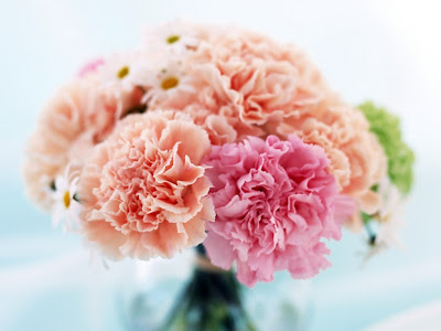 centro-de-claveles-color-rosa