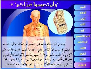 مدونة صحتك في رمضان: سبتمبر 2008