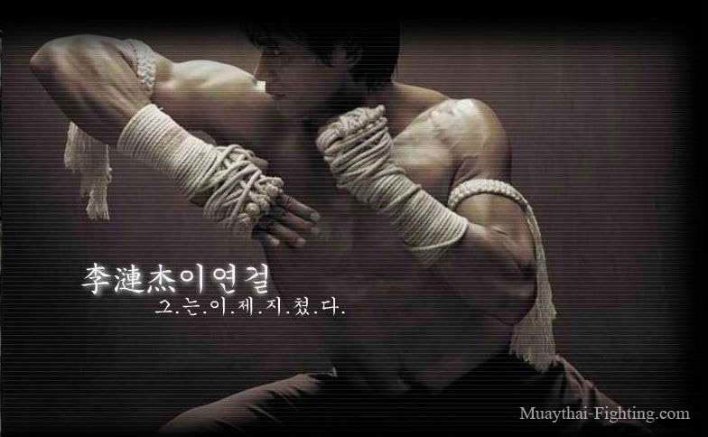 Free Wallpaper For Desktop Muay Thai Wallpaper
