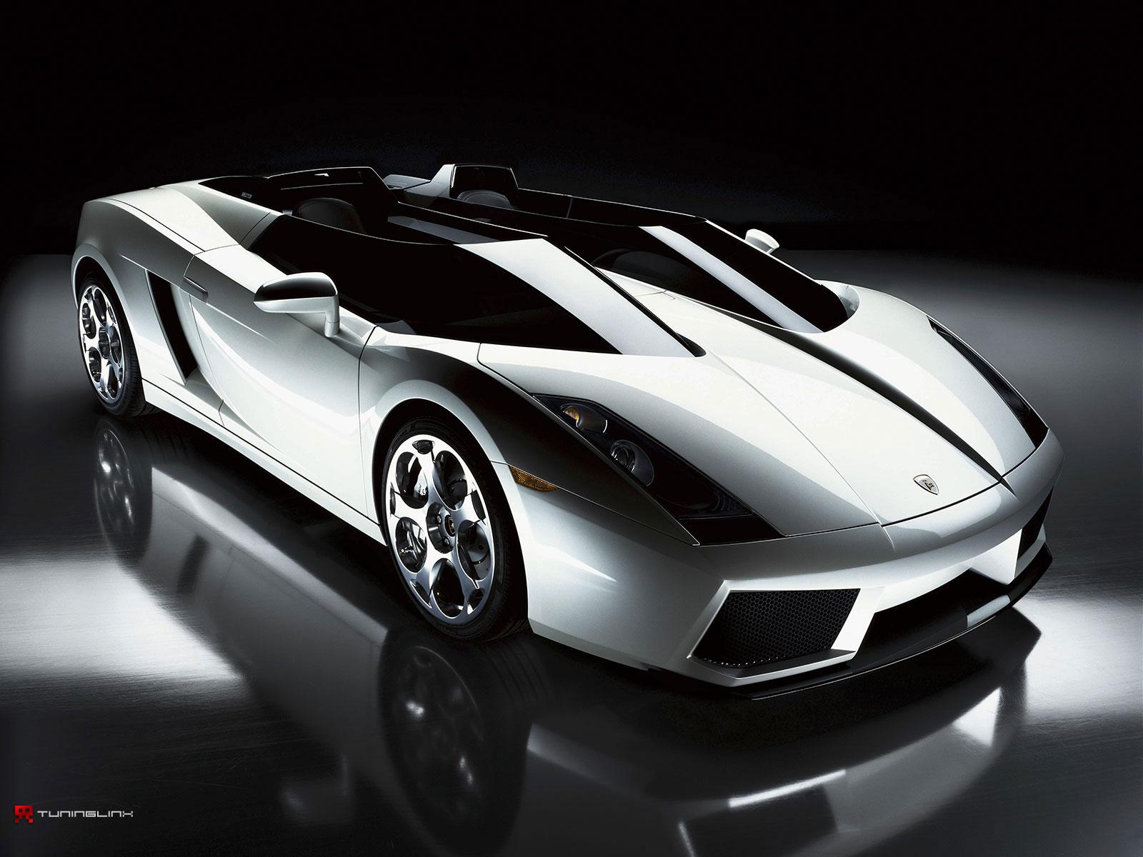 2010 Ferrari Dino vs Lamborghini Exotic Sports Cars