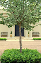 The Garden @ Brabourne Farm